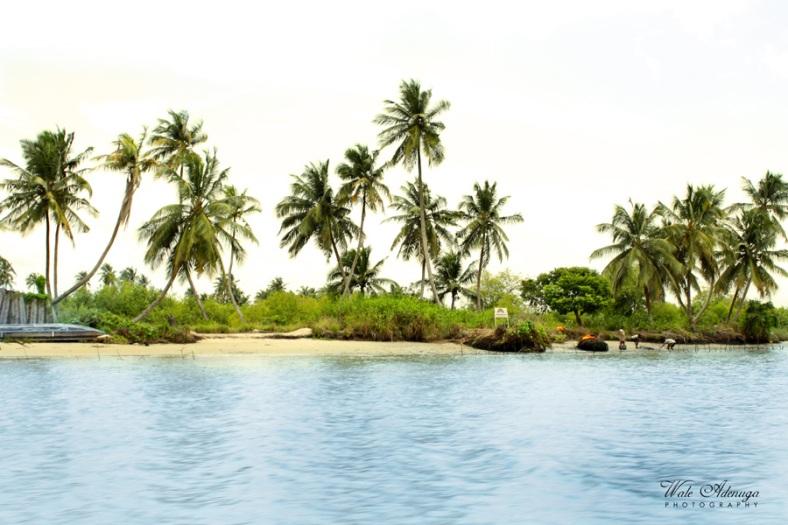 trees, beachsand, landscape, ocean, @waleadenuga boats, canoe, Wale Adenuga Photography