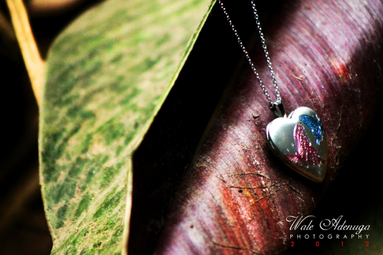 leaf, Pendant, love-shaped, Valentine's Day, Photo Of The Day, Wale Adenuga Photography